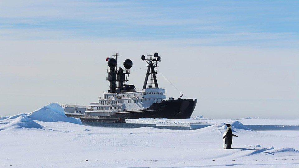 arctic-p-yacht