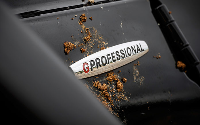 mercedes-benz-g-350-d-professional-6